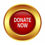 Red button with donate now text